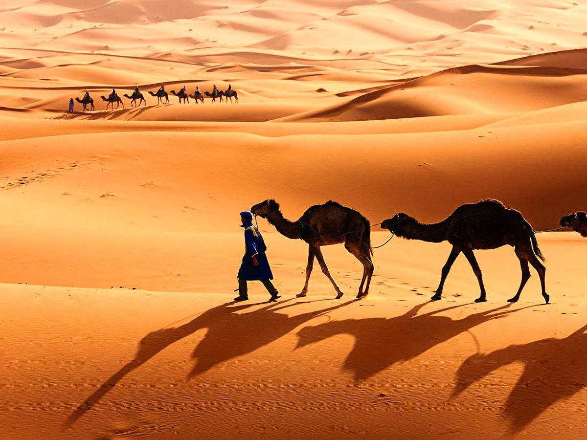 The Sahara Desert in Africa