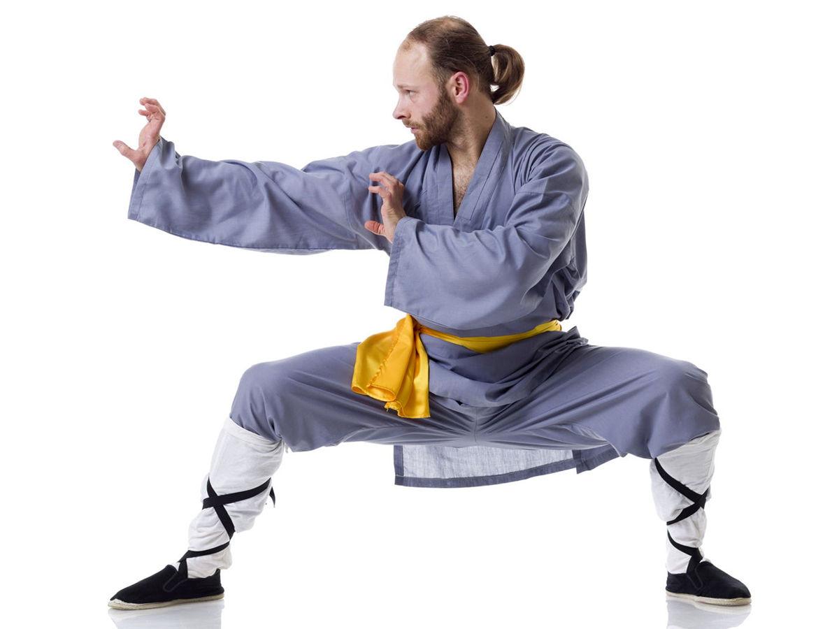 Dragon styles kung fu