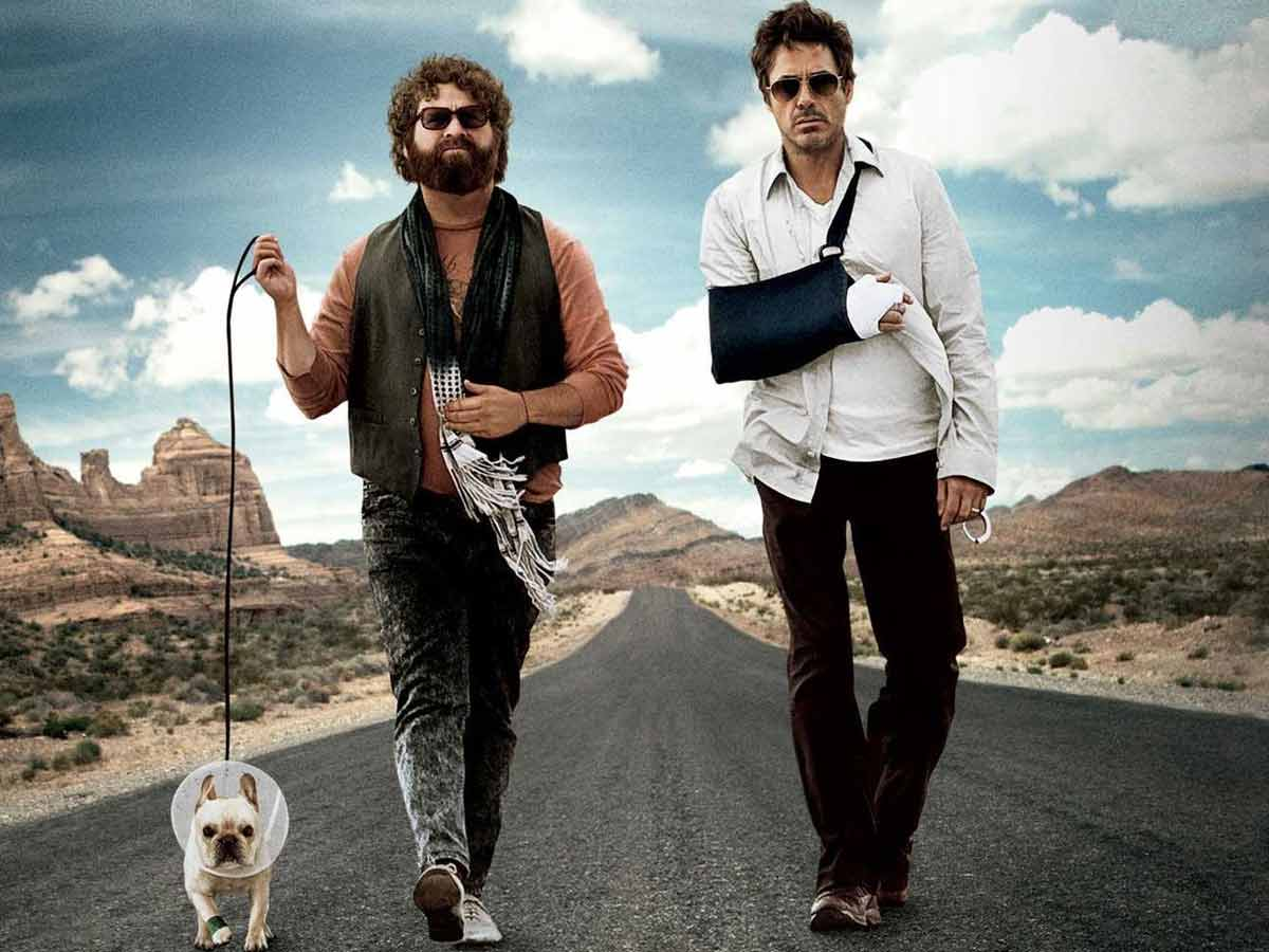 Comedy movies netflix, due date