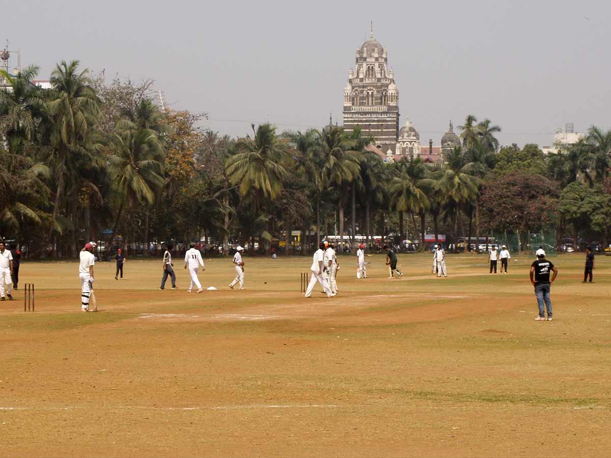 best cricket movies