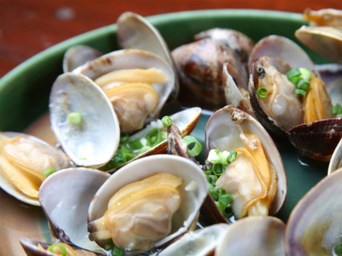 oysters, shellfish