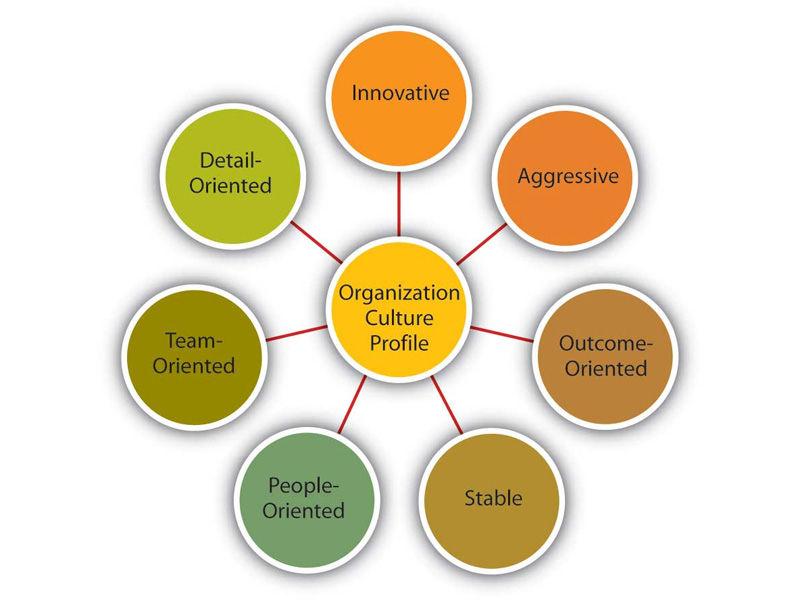 characteristics of company culture