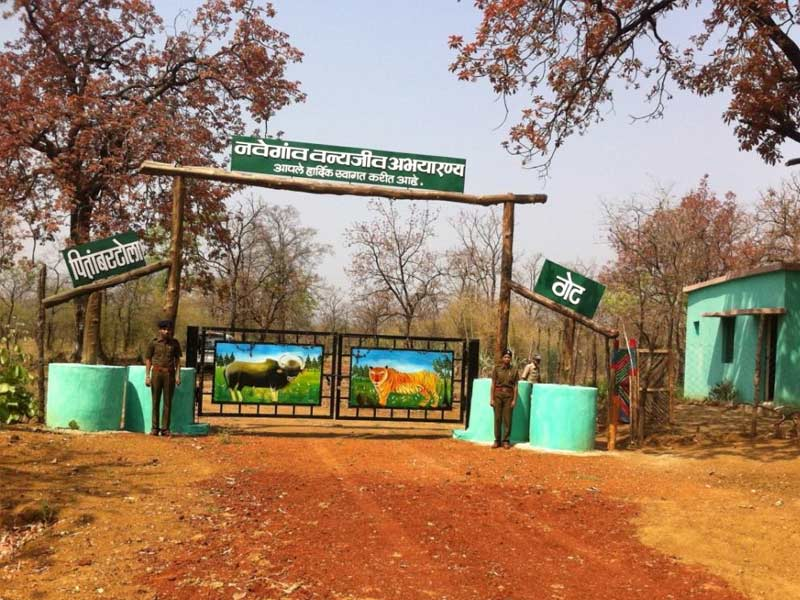 navegaon national park