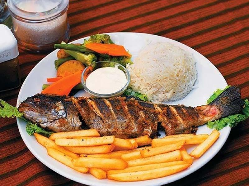 kullu trout fish