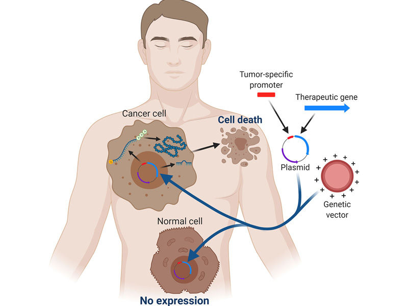 genome therapy functioning