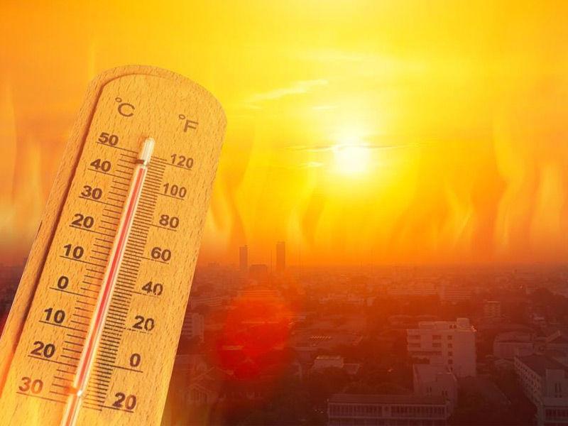 heatwave effects
