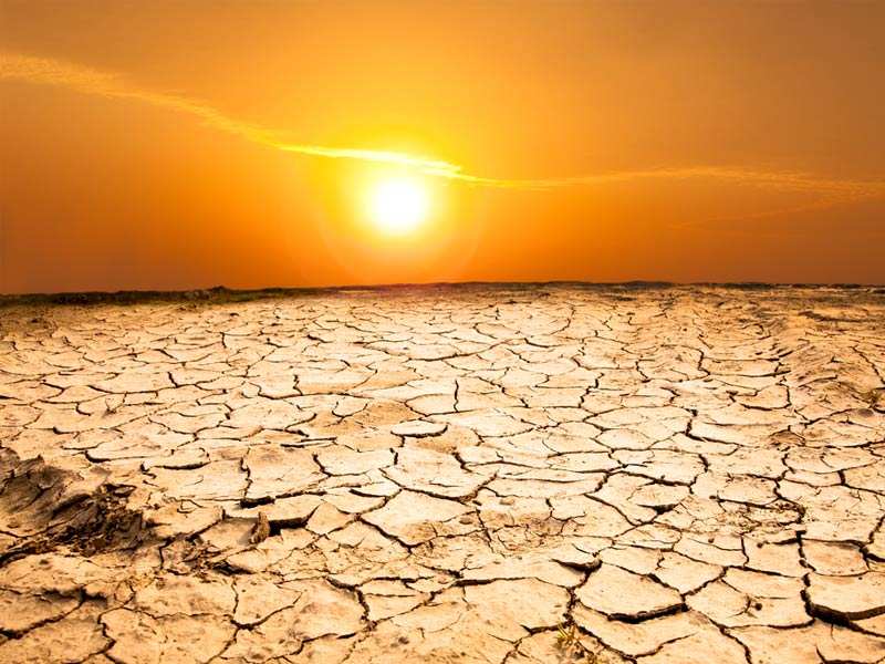 heatwave and droughts
