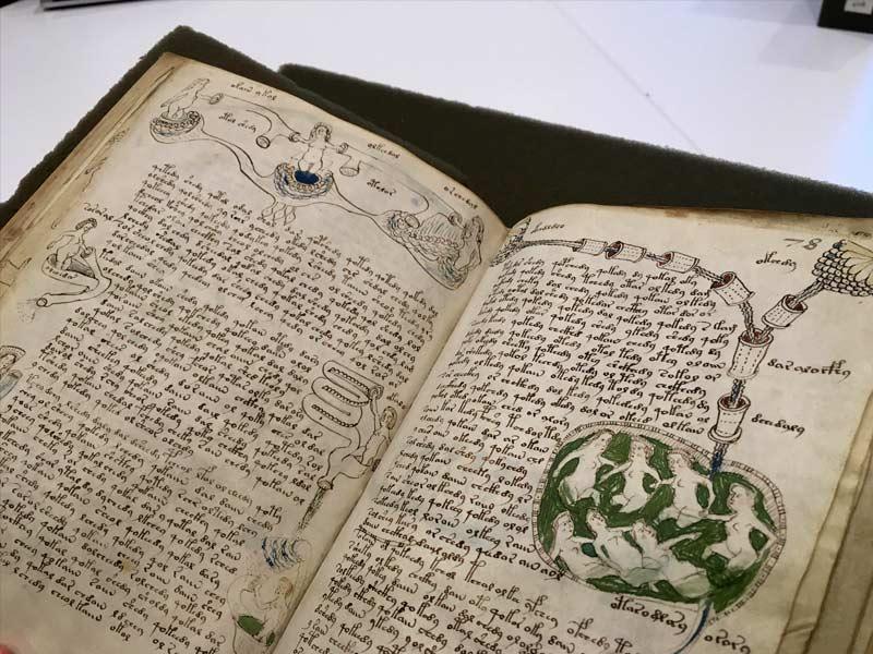 manuscript voynich