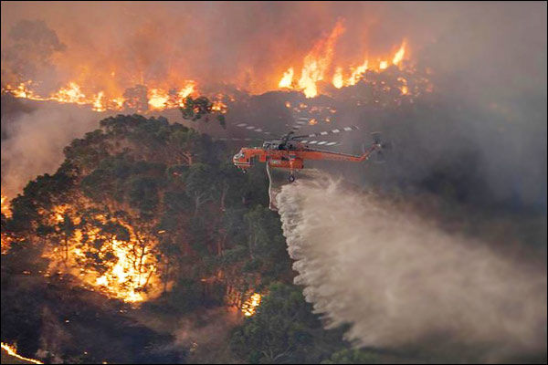 Australia will take 100 YEARS to recover from bush fires