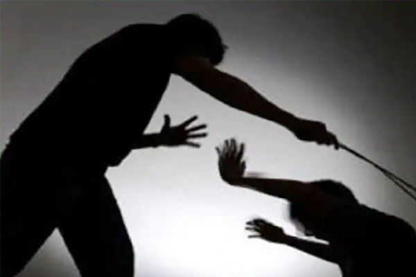 Vadodara man breaks wife's spine after getting irritated over online ludo defeat against her