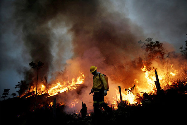 Fire in Amazon increases