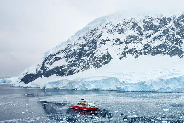 Hottest Year In Antarctic Peninsula