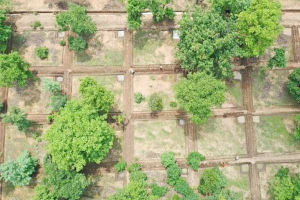 Depleting groundwater in Chattisgarh forests