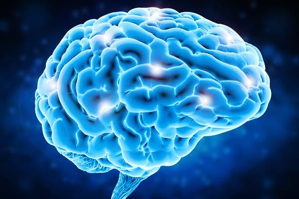 Brain can be made to teleport