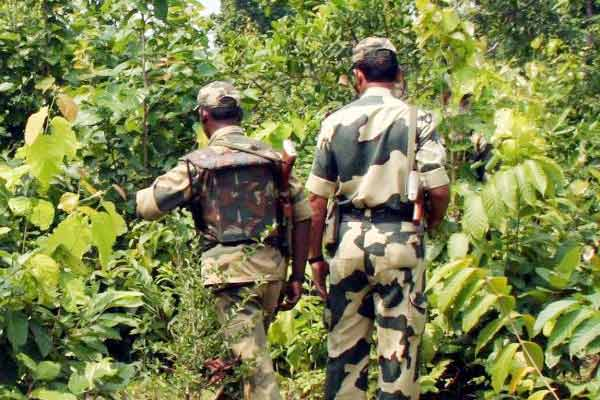 460 Naxals Killed And 161 Security Personnel Dead Since 2018