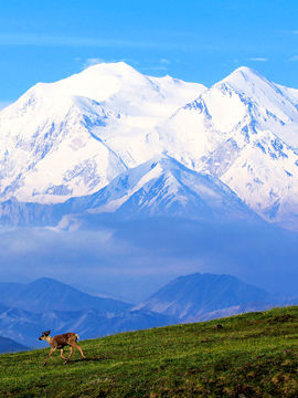 7 Challenging Peaks To Climb Other Than Mount Everest