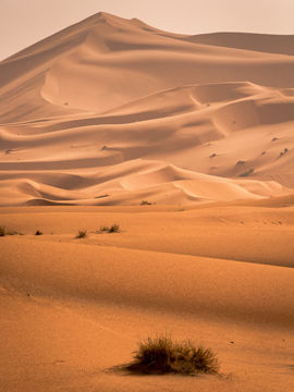 5 Most Breathtaking Deserts In The World