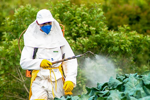 Switzerland Will Be The First Country In Europe To Ban Synthetic Pesticides