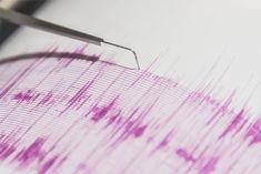Earthquake tremors in Leh Ladakh