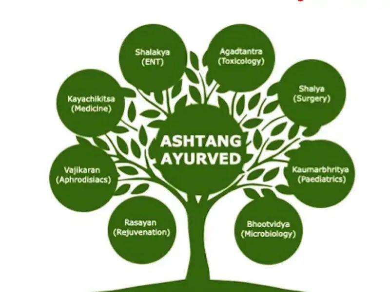 8 categories of ayurveda