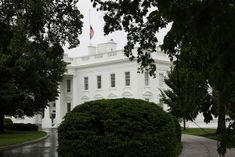 White House on travel restrictions