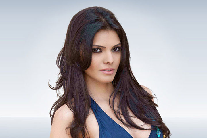 Sherlyn Chopra summoned by property cell