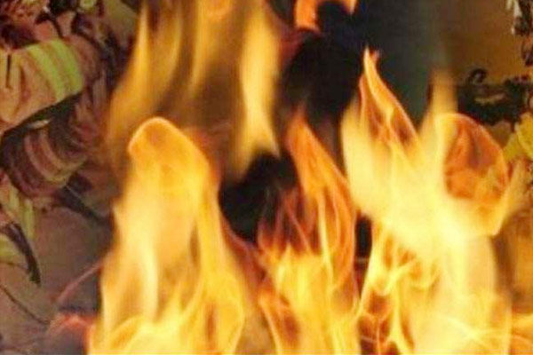 Blast at poultry feed plant