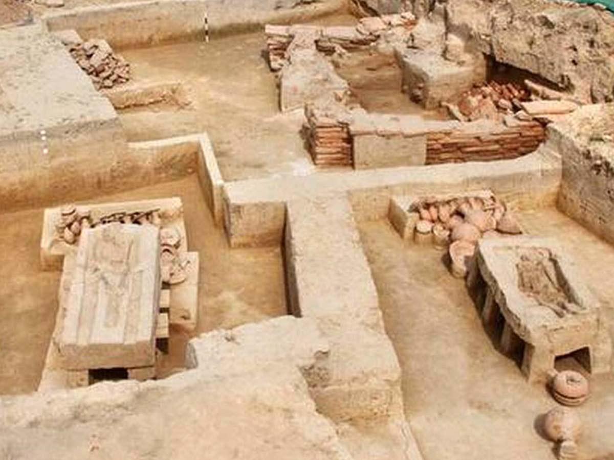 Sinauli Excavation Site
