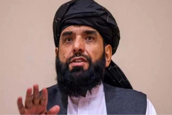Taliban said We Have The Right To Raise Our Voice For The Muslims Of Jammu And Kashmir
