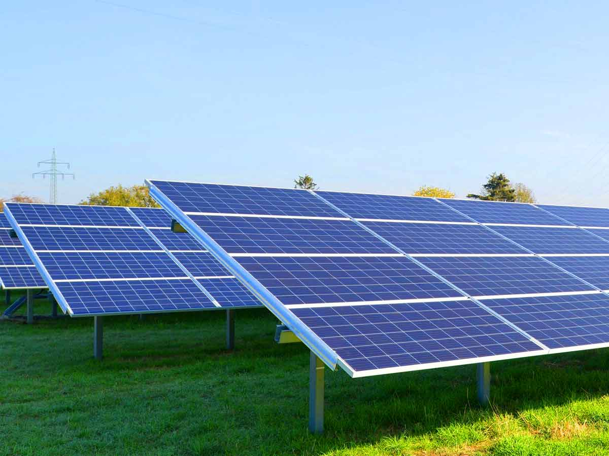 largest solar power plant in india