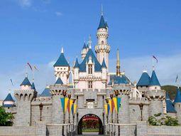 new castle disneyland