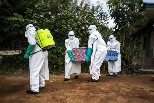 Study on Ebola virus