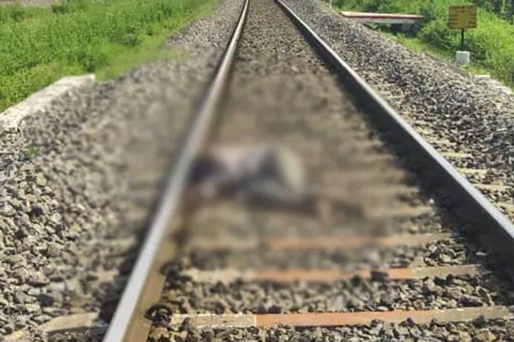 Hyderabad rape murder accused found dead