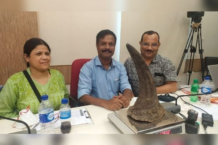 Assam government decides to destroy 2,479 rhino horns publicly