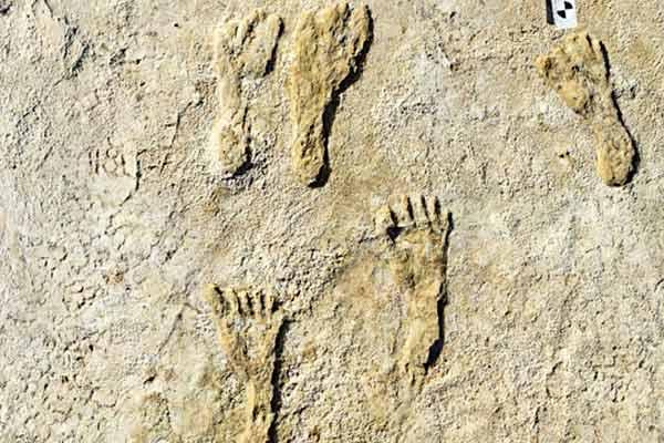 Oldest human footprints
