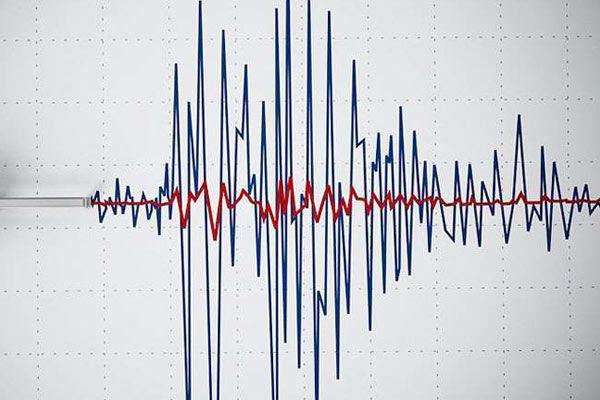 Earthquake Tremors in Tokyo