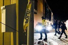 Man kills 5 with bow and arrow
